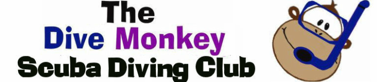 Bristol, Bath and Swindon Scuba Diving Club - The Dive Monkey Club